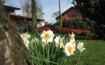 agri in fiore 2010 047